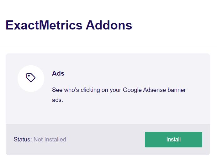 Install ExactMetrics Addons