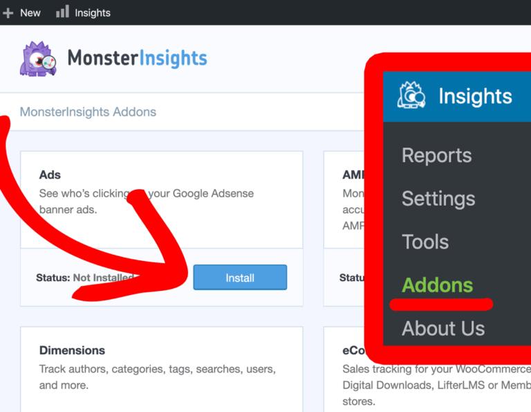Install MonsterInsights Addons